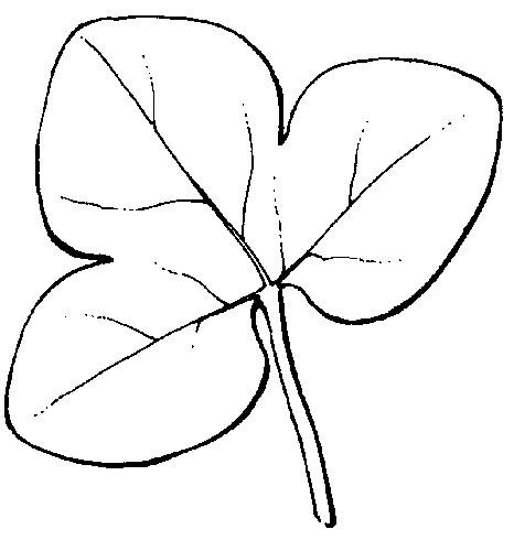 Herbario de Jaca